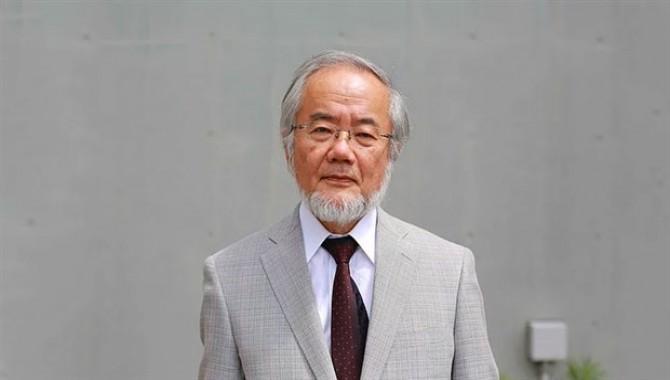 2016 Nobel Tıp Ödülünün sahibi belli oldu