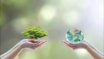 Çevre Platformu: Sorun da çözüm de küresel