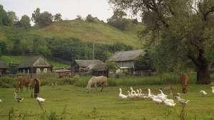 Çiftçi-Sen: 'Kırsal Mahalle' olmamız yetmez, köylerimizi tüm haklarıyla geri istiyoruz!