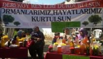 Dereköy'de çam balı, kiraz ve zeytin RES'e direniyor