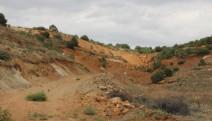 Eskişehir'de 200 bine yakın ağaç kesilecek