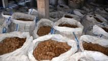 Patates üreticisi isyan ediyor: patatesler depolarda çürüyor