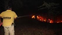 Kazdağları orman yangınında 40 hektar alanın zarar gördü