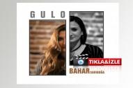 Gerçek bir hikaye, mükemmel bir ses, Gülizarların feryadı: Gulo